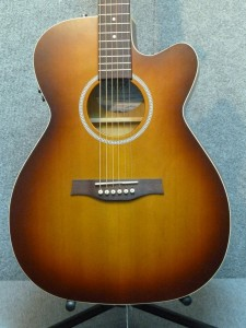 Seagull Entourage Rustic Concert Hall CW QIT. List $659.00. Our price $499.00.