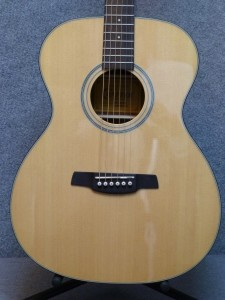 Crafter Silver Series $249.00 w/gig bag.